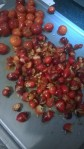 Chopped Rosehips